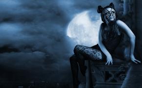 Картинка кошка, взгляд, девушка, облака, ночь, город, сетка, луна, волосы, высота, руки, маска, арт, прическа, колготки, …