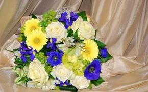 Картинка фото, Цветы, Букет, Розы, Герберы, Ирисы