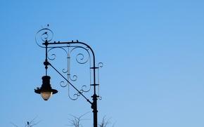Картинка небо, деревья, птицы, дерево, widescreen, обои, столб, вечер, воробей, фонарь, wallpaper, широкоформатные, background, обои на …
