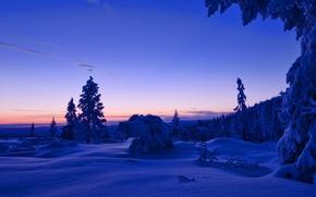 Картинка зима, лес, небо, облака, снег, деревья, закат, вечер, Норвегия