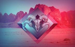 Картинка горы, цвет, череп, рога, skull, art, pint