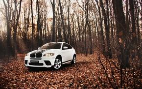 Картинка лес, листья, Осень, Белый, BMW, БМВ, внедорожник, white, tuning, E72
