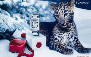Картинка стиль, коробка, подарок, часы, леопард, Cartier