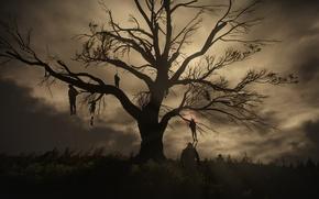 Картинка ночь, дерево, Ведьмак, висельники, The Witcher 3:Wild Hunt