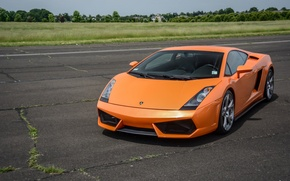 Картинка Lamborghini, Gallardo, orange, track