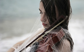 Обои паутина, скрипка, девушка