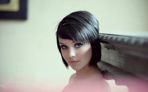 Картинка взгляд, лицо, модель, брюнетка, красивая, Mellisa Clarke