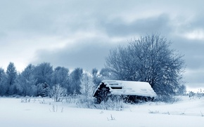 Картинка зима, снег, деревья, природа, фото, сарай