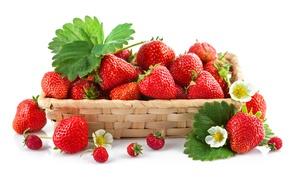 Картинка ягоды, земляника, клубника