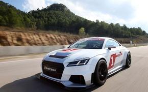 Картинка Audi, Sport