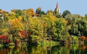 Картинка осень, деревья, птицы, река, башня, Швейцария