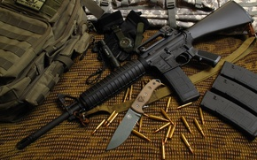 Картинка skull, gun, USA, logo, snake, military, weapon, bird, american, M16, Winchester, rifle, clock, boots, flashlight, …