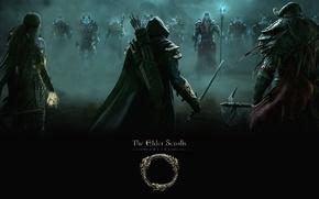 Картинка The elder scrolls online, bethesda softworks, zenimax online studios, маг, воин