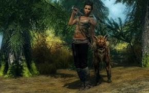 Обои оружие, животное, взгляд, The Elder Scrolls V Skyrim, дорога, деревья, девушка, меч, лес