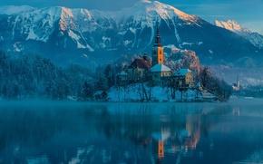 Картинка зима, горы, утро, Словения, Январь, город Блед, Юлийские Альпы, Бледское озере