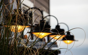 Картинка трава, фон, лампы