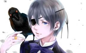 Картинка птица, аниме, арт, ворон, Kuroshitsuji, Ciel Phantomhive, тёмный дворецкий