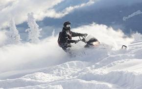Картинка иней, Снег, ёлки, Snow, снегоход, Polaris, snowmobile, Полярис