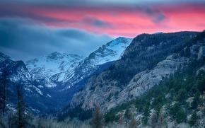 Картинка лес, небо, облака, деревья, горы, природа, Colorado, Rocky Mountain National Park