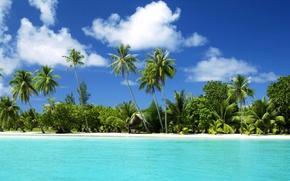 Обои пальмы, вода, океан, тропический остров, пляж.море, песок