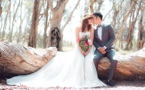 Картинка листья, деревья, дерево, букет, пара, невеста, леса, свадьба, жених, корона из цветов