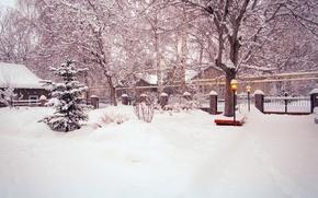 Картинка зима, дорога, снег, деревья, улица, забор, елка, двор, фонари, ёлка, кусты