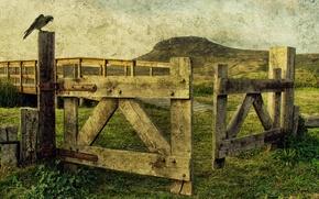 Картинка стиль, фон, забор, ворон