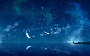 Обои арт, звездное небо, море, птицы, ночь, tokumu kyuu, маяк, звезды