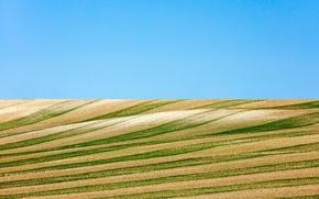 Картинка sky, lines, farmland