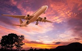 Обои пейзаж, небо, полет, силуэты, самолет, деревья, взлет, зарево, пассажирский