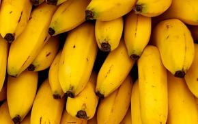 Картинка желтый, Бананы