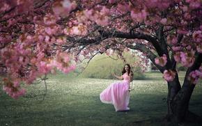 Обои девушка, качели, весна, сад
