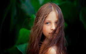 Картинка фон, волосы, портрет, девочка