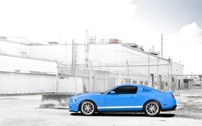 Картинка сетка, голубой, забор, Mustang, Ford, Shelby, GT500, мустанг, мускул кар, форд, шелби, blue, спортивные полосы, …