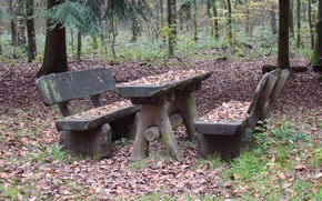 Картинка осень, лес, трава, листья, деревья, скамейка, ветки, стол, листва, скамейки, скамья