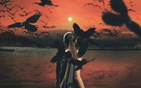 Обои mythology series, девушка, птицы, вороны