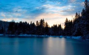 Картинка зима, снег, деревья, Вода