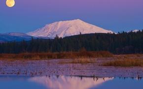 Картинка лес, небо, снег, деревья, природа, отражение, река, луна, гора, вечер, полнолуние