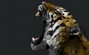 Картинка морда, тигр, клыки, оскал, геометрия