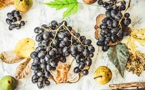 Картинка виноград, фрукты, груши