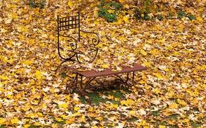 Картинка скамейка, кресло, листопад
