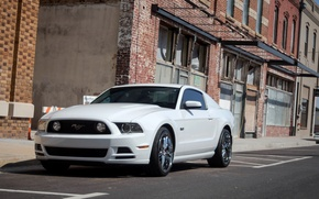 Картинка Mustang, Ford, 5.0, White, Street