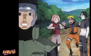 Картинка дорога, эмоции, команда, Naruto, друзья, art, миссия, жилет, ninja, Sakura Haruno, captain Yamato, Sai Akashi, …