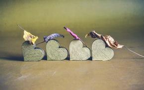 Картинка лист, фон, сердце