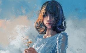 Картинка девушка, облака, цветы, арт, полевые, xi chen chen