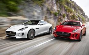 Обои F-Type, ягуар, Jaguar