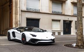 Картинка Roadster, Lamborghini, Aventador