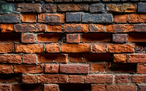 Обои wall, bricks, brown