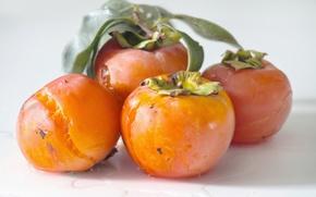 Картинка плоды, фрукты, оранжевые, спелые, королек