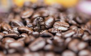 Картинка brown, Coffee, grains, quantity